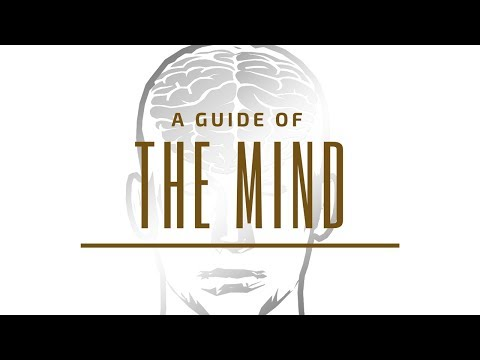 Thought + Feeling = Manifestation  (In depth Law Of Attraction Teachings!) - Stuart Wilde