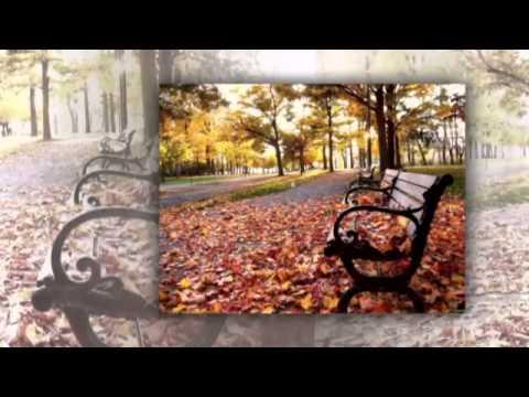 Клип Александр Маршал - Кленовый лист