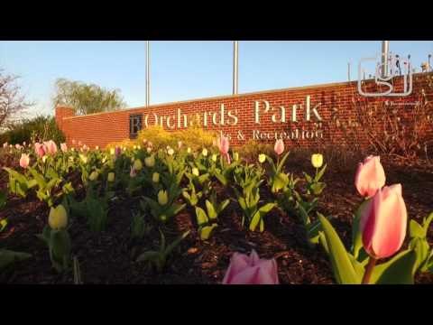 Bentonville Arkansas Travel Tips - Spring Flowers in Downtown