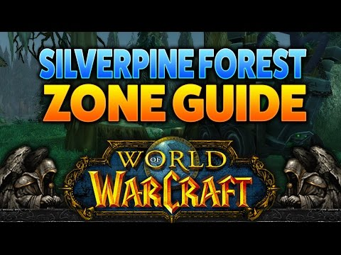 Transdimensional Warfare Chapter 1 | WoW Quest Guide #Warcraft #Gaming #MMO #魔兽