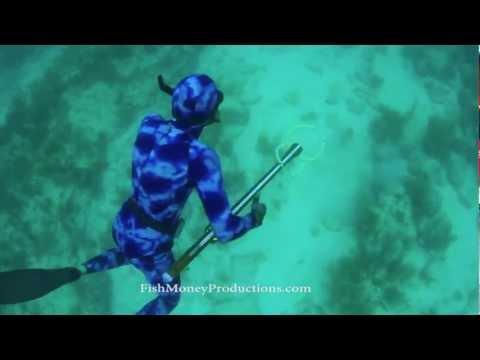 "Sub Sea Spearguns ""Leiomano"" underwater hunting in the Fl. Keys."