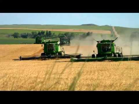 Great American Wheat Harvest By Conrad Weaver