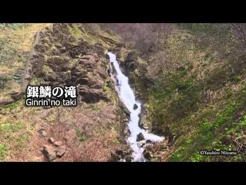 雄冬 白銀の滝 銀鱗の滝 by 新山裕洋 on YouTube