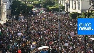 L'Algérie en ébullition : la contestation du président Bouteflika grossit