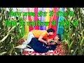 2018 Famous Bhojpuri Song || लैबुउ मकई के खेत में || Lebau Makai Ke Khet || Bansidhar Chaudhary
