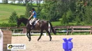 Part 2/2 Jessica Phoenix - Jumping - Canadian Eventing Team Training Camp