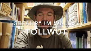 Tollwut -