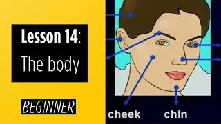 Beginner Levels - Lesson 14: The Body