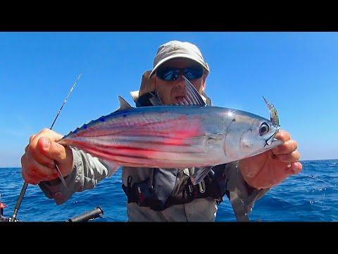 Offshore Tuna Fishing Journey - Kayak Fishing -  4K 50fps