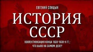 Евгений Спицын История СССР 89 Коллективизация конца 1920 1930 х гг что было на самом деле