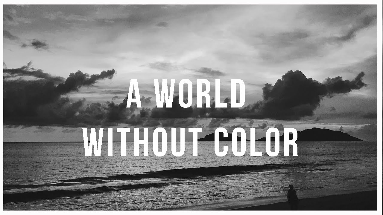 a world without color essay Without colour the world would be a boring place how far do essaysimagine a world without colour everything would be in monochrome the feeling would be equivalent to living in a black and white television.