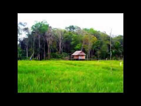 Khoirul Bariyah - Mayada ( Cover by Fina_ni ft Arya )