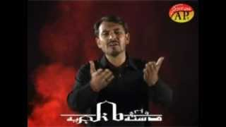 Zakir Asadi 2012-2013 Noha Paye ramla manun (punjabi)