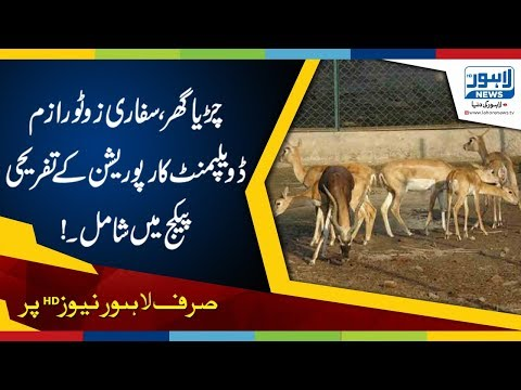 Lahore Zoo, Safari included in Tourism Development Corp's Entertainment Package
