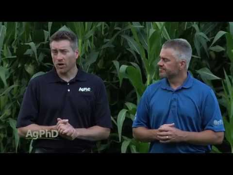 Yield Maps #961 (Air Date 9-4-16)