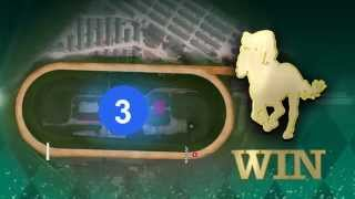 Betting 101 - Win Place Show