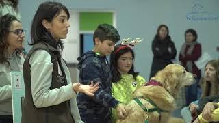 Os cans chegan ao IES de Soutomaior