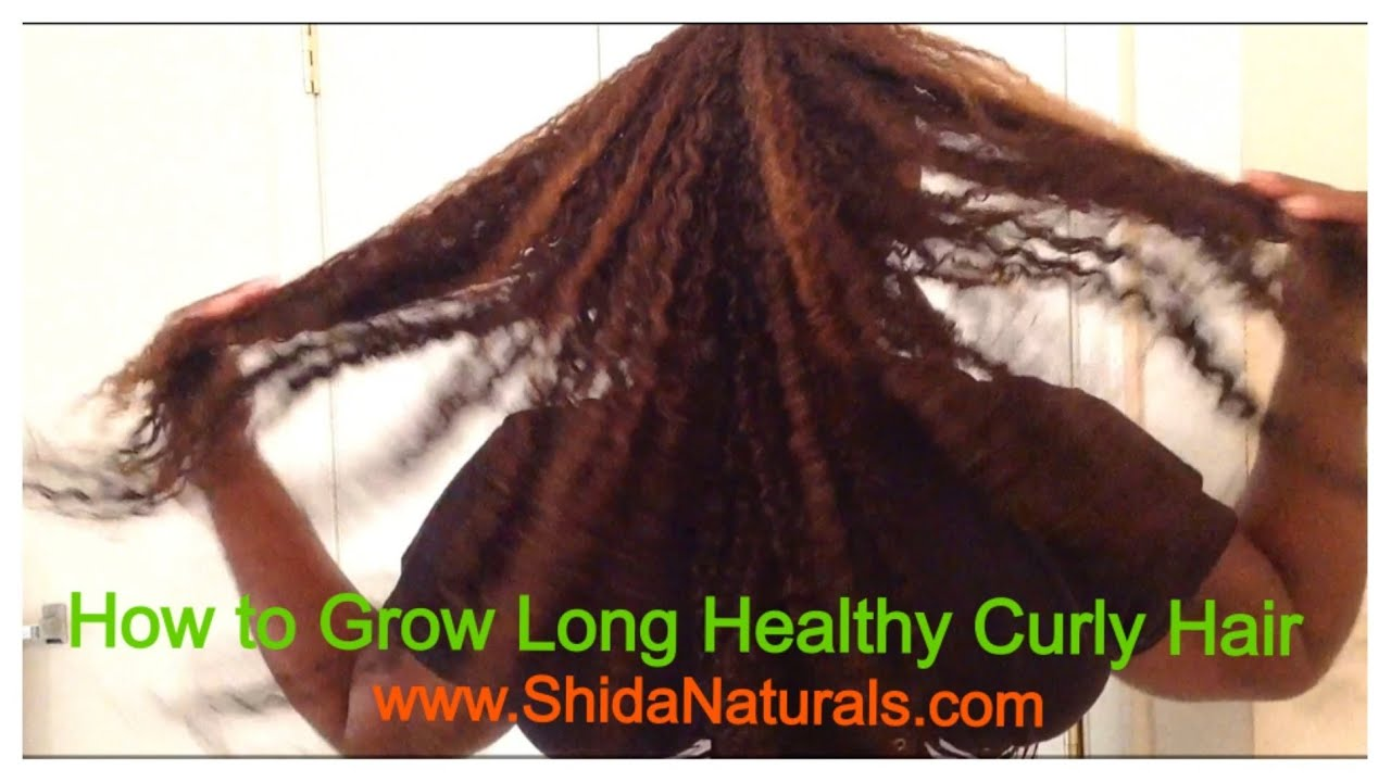How To Grow Long Healthy Natural Curly Hair Fast Youtube