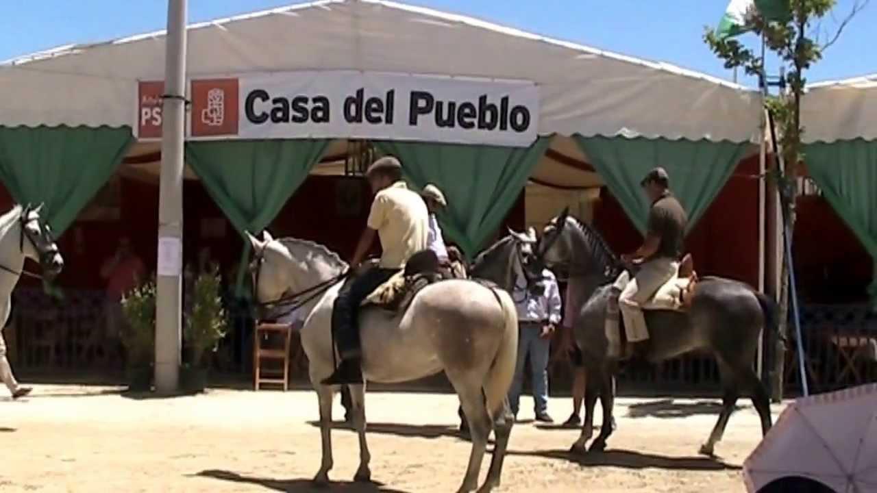 Medina sidonia c diz ferias y fiestas 2013 a caballo por - Eltiempo es medina sidonia ...