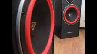 Cerwin Vega! VE-12 review! Bass i love you