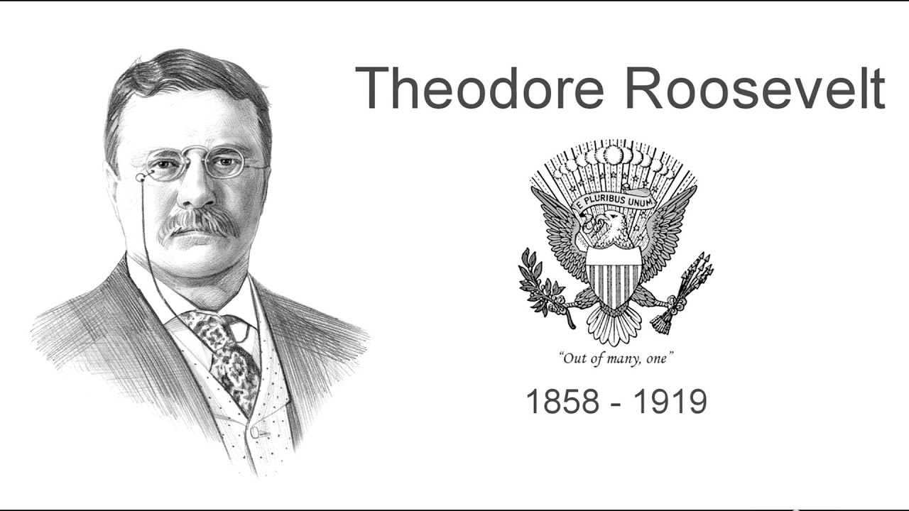 teddy roosevelt summary