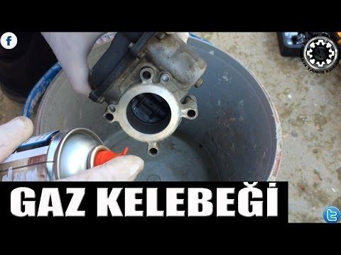 Gaz Kelebeği Temizleme
