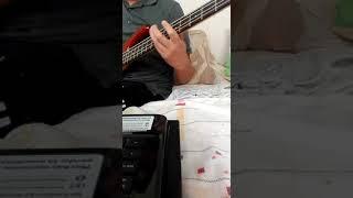 Los Shapis - El aguajal cover Bajo con Tablatura