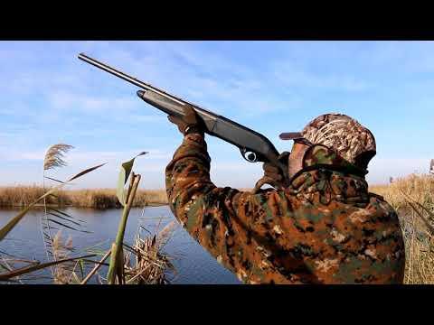Ducks Hunting Romania 2016