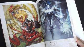 Lord of Vermilion II Art Book Red