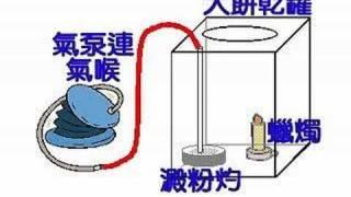 初中科學趣味實驗-能量,生物與空氣-能量轉換,燃燒-澱粉炸彈 Starch bomb thumbnail