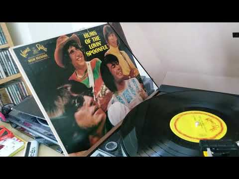 The Lovin' Spoonful - Full Measure (declicked MONO vinyl)