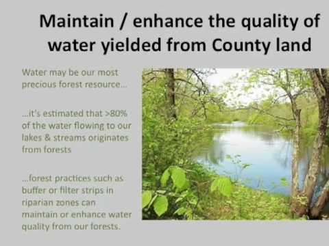 Aitkin County Strategic Forestry Plan, 2000-2008 Progress Report