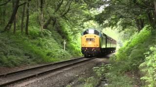 Train Horns  2 Tones V25