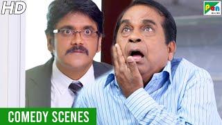 Dayaalu - Superhit Comedy Scenes | Hindi Dubbed Movie | Nagarjuna, Naga, Samantha, Brahmanandam