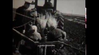 Охрана природы(«Охрана природы» - Леннаучфильм-1976г. В начале фильма даётся общая характеристика природы нашей страны,..., 2016-04-16T18:57:15.000Z)