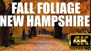 New Hampshire Autumn Fall Foliage Roadtrip (N Conway, White Mountain, Kancamagus ) SaDhiSu Flicks