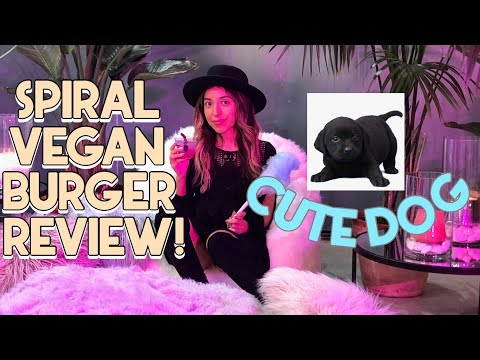 🤩 COOL Art Gallery in Fort Worth Texas 👀 Spiral Diner Vegan Burger Review 🍔 Cute Little Dog 🐶