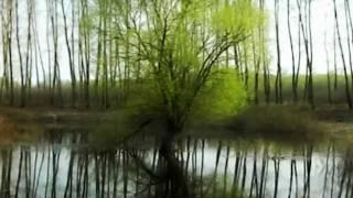 ульяновка   десна(, 2011-04-27T17:44:44.000Z)