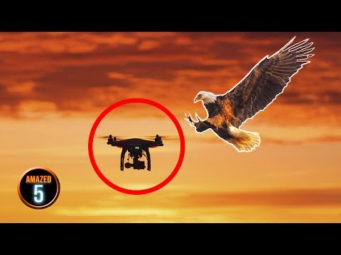 5 Things You Shouldn't Do With Your Drone