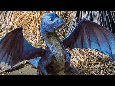 Feeding A Baby Dragon Scene - ERAGON (2006) Movie Clip