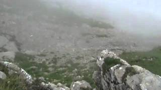 Mountain goat falls to its death - The Aftermath