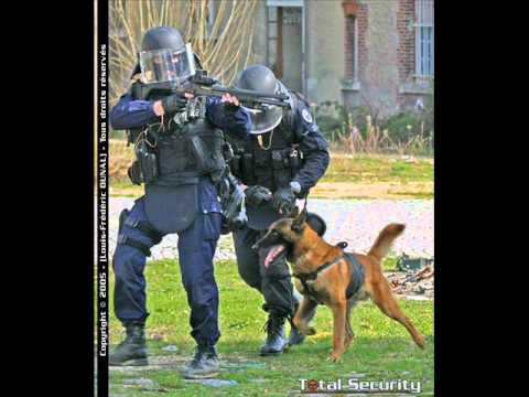 GIGN (groupe d'intervention de la gendarmerie nationale)