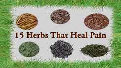 15 Herbs For Pain Relief - Neck Pain, Back Pain, Arthritis Pain etc.