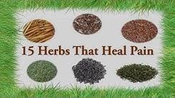 hqdefault - Back Pain Herbal Tea