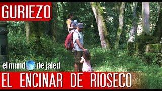 Qué ver en Cantabria - ENCINAR DE RIOSECO - GURIEZO - EL MUNDO DE JALED