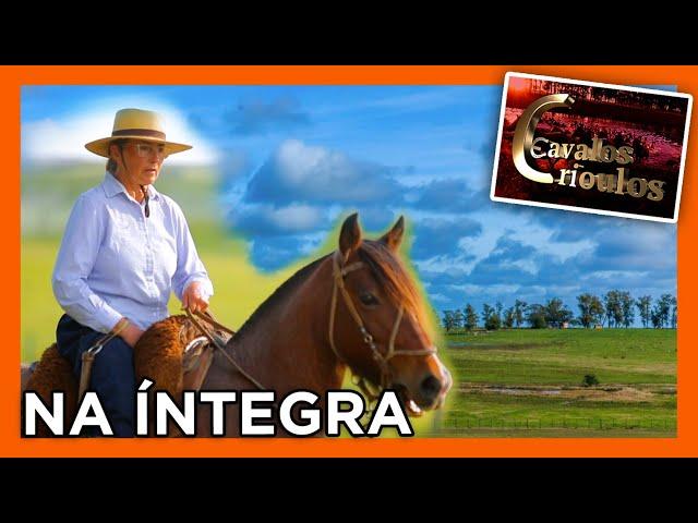 PROGRAMA NA ÍNTEGRA - 29/11/2020