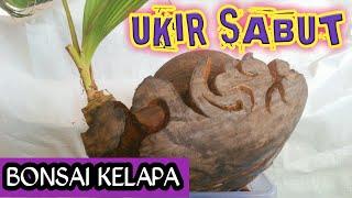 Bonsai Kelapa Cara Ukir Sabut By Afif Arianto