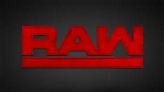 20.2.17 WWE Raw Episode 36 Hauptkampf Bralovic vs Glebow