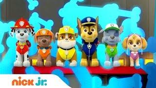 Patrulla Canina España | La cancion oficial de la serie (Música) | Nick Jr.