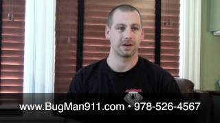 How do I know if I have BedBugs (bed bugs)? in MA